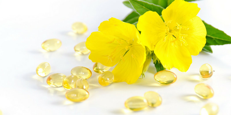 Evening primrose herbs for pregnancy and breastfeeding health RootMama